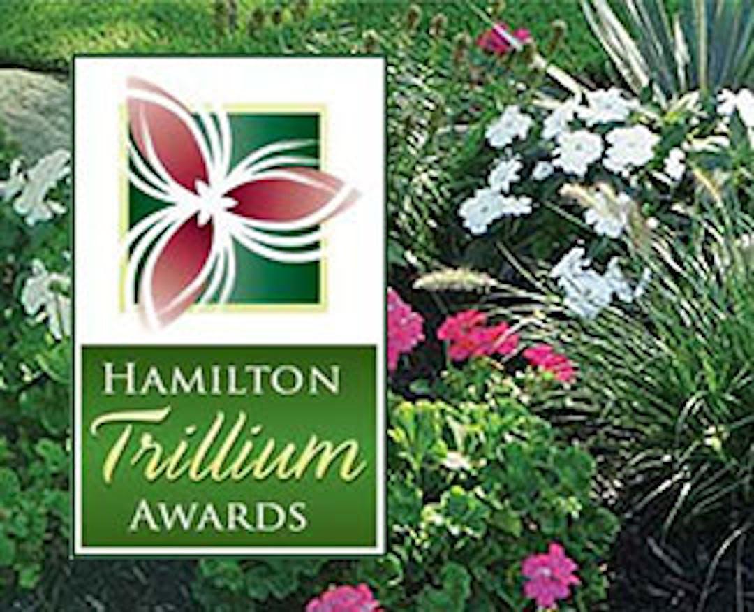 Trillium Awards 2020