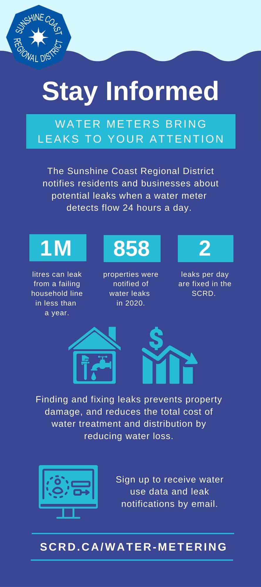 Metering Infographic - Leaks.png