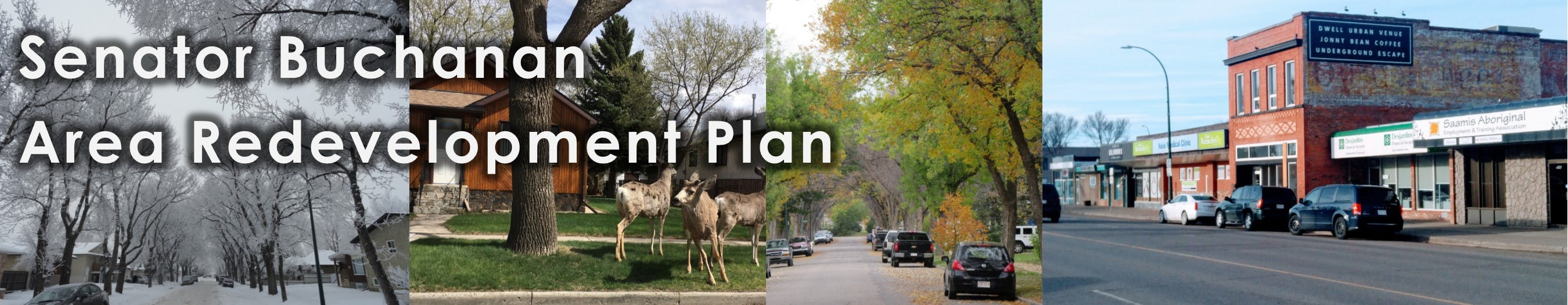 Senator Buchanan Area Redevelopment Plan banner