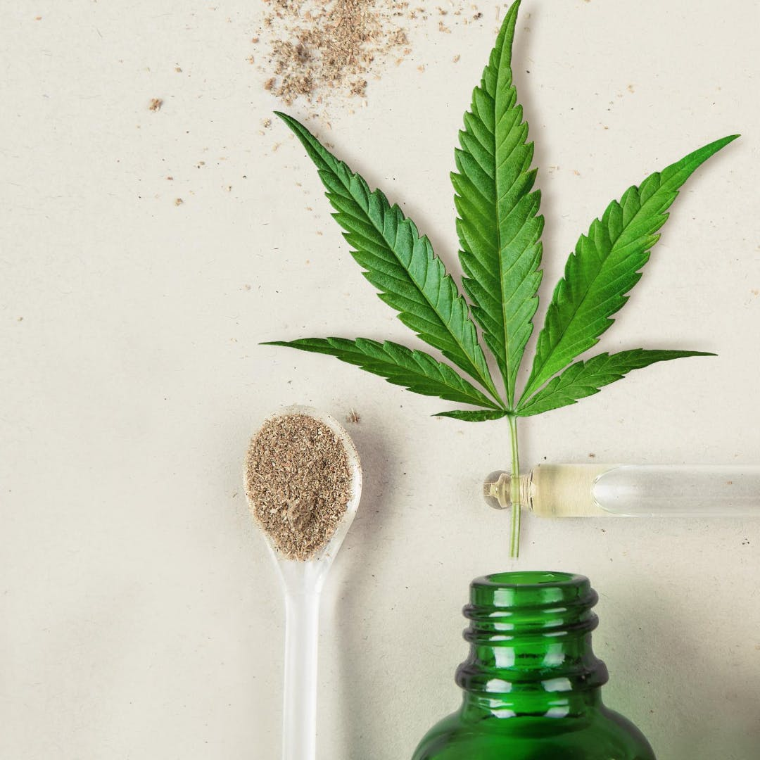 General information on cannabis, cannabis facilities and more.