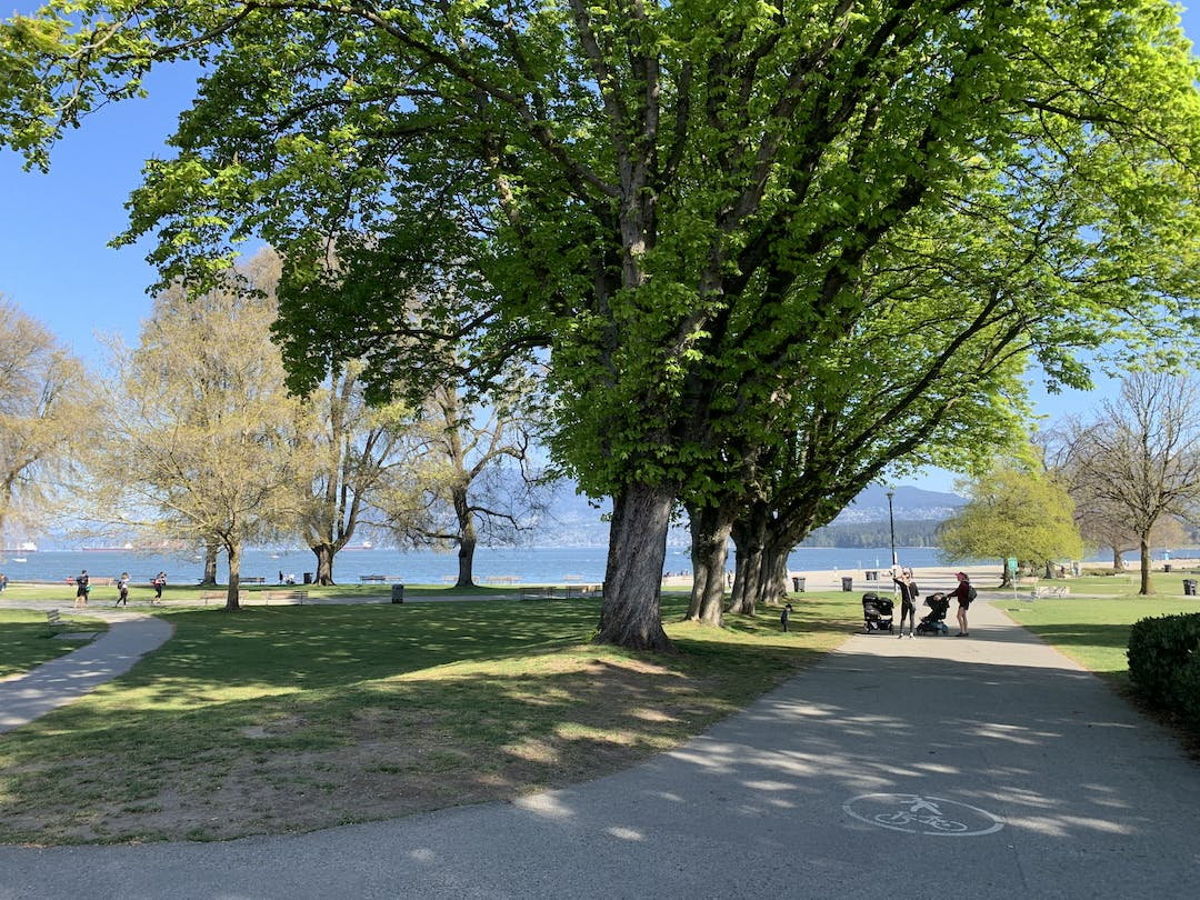Yew Street path in Kitsilano Beach Park is a shared walking, rolling, and cycling path