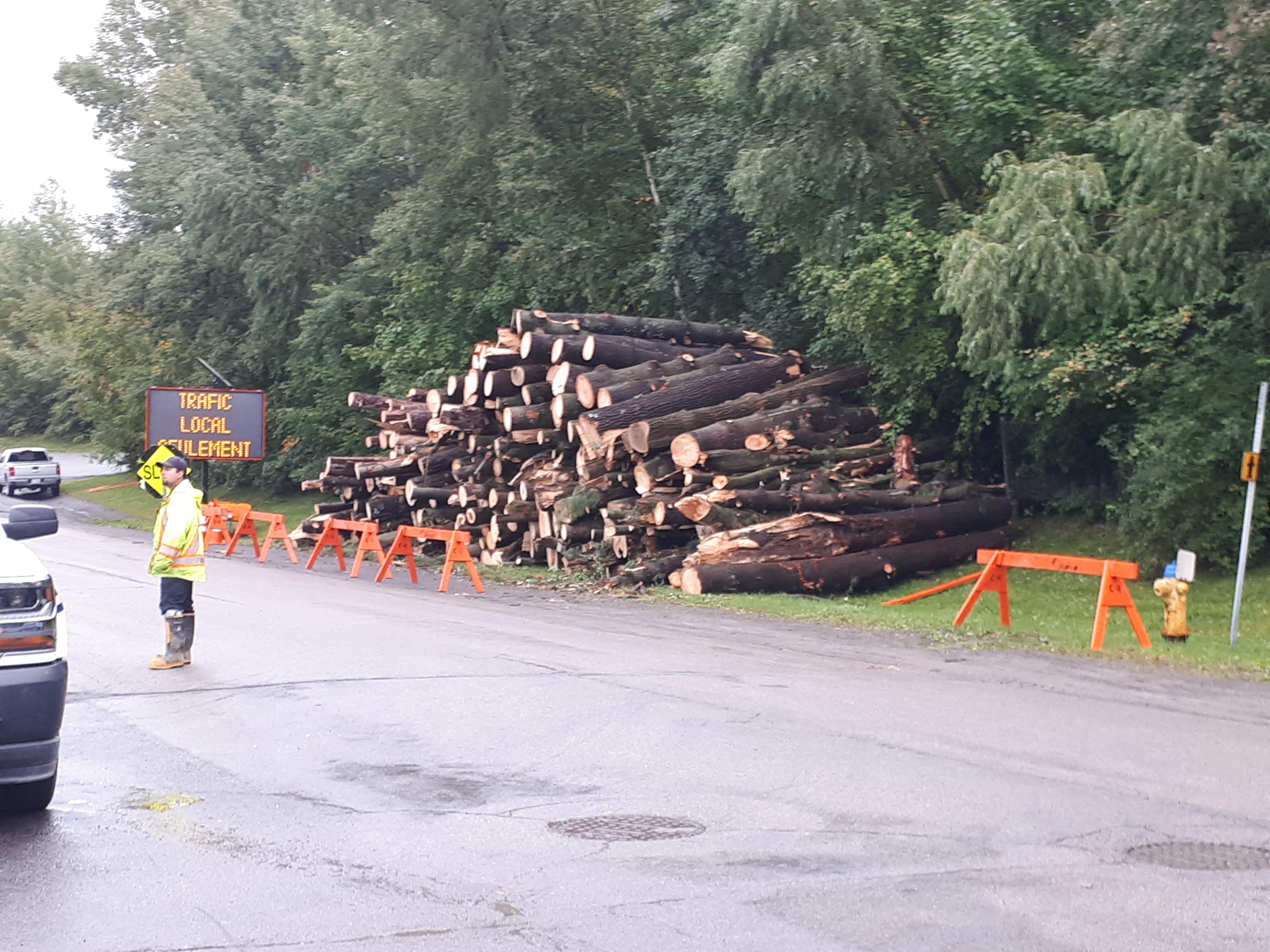 trees piled up post tornado