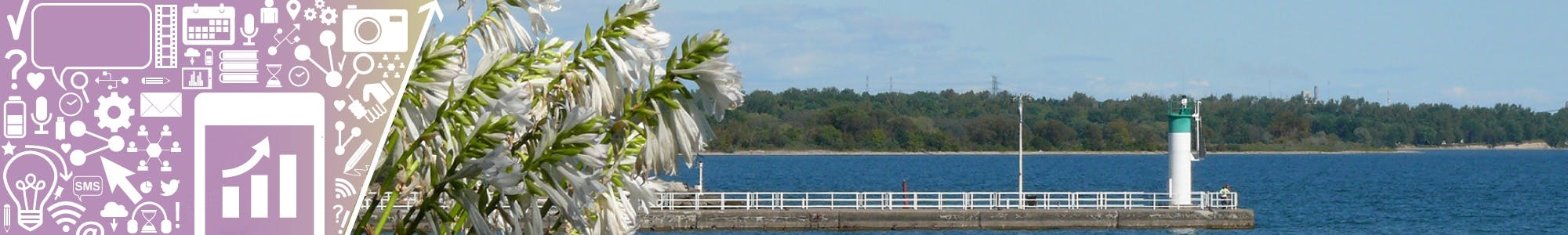 Oshawa pier photo taken from the waterfront through greenery and flowers