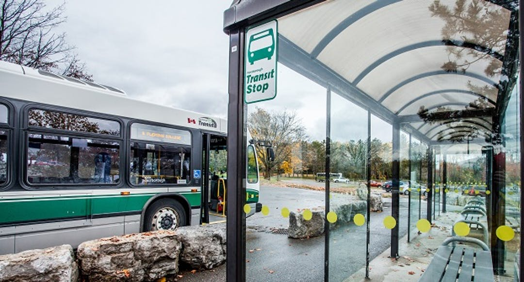 A Peterborough Transit bus and shelter