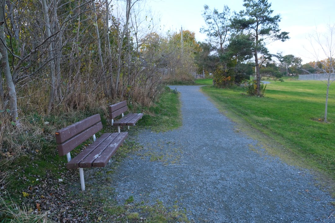 Two benches beside a gravel trail facing a grassy field