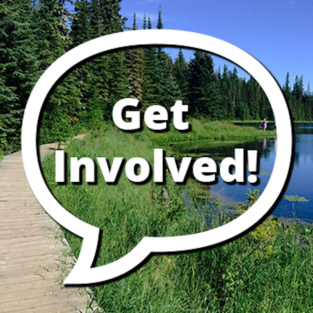 Get involved speech bubble on top of Lily Lake image.
