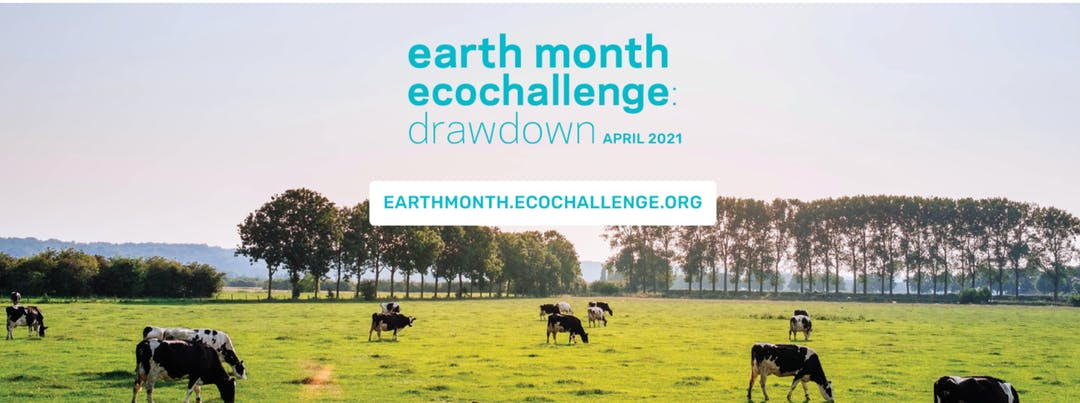 Banner image of cows grazing in a field. Text reads: earth month ecochallenge: drawdown April 2021. earthmonth.ecochallenge.org