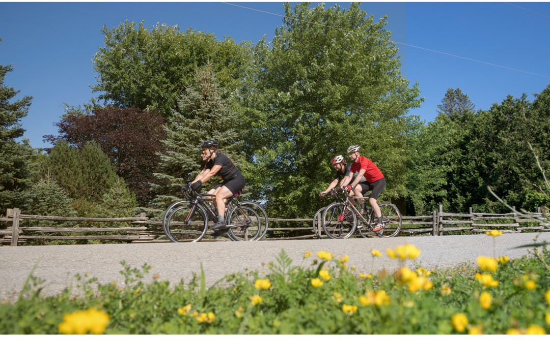 Group of 4 bicyclers cycling down a rural road in Dufferin