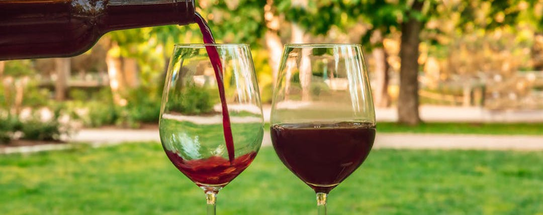 pouring wine into wine glass with grass and trees in the background