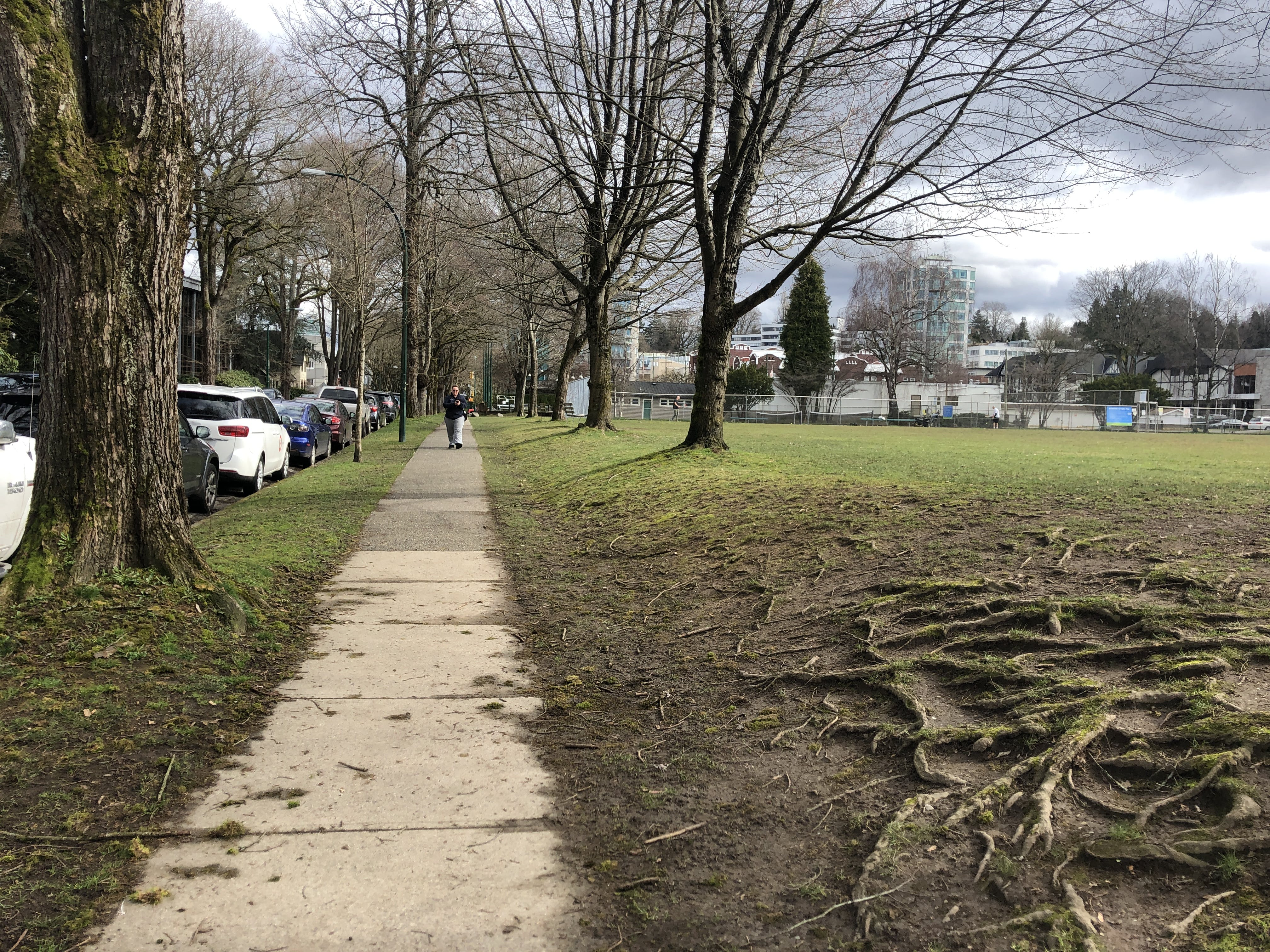 14th Avenue looking east at perimeter of the park