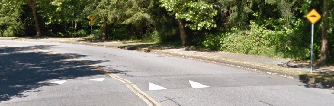 Speed Hump Example.JPG