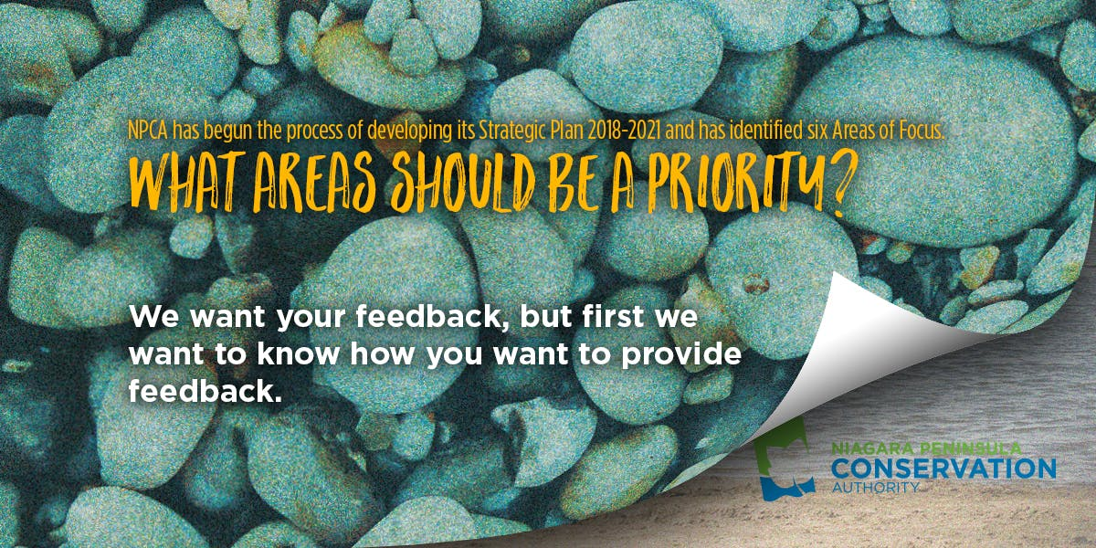 NPCA banner image of pebbles requesting feedback on participation preference