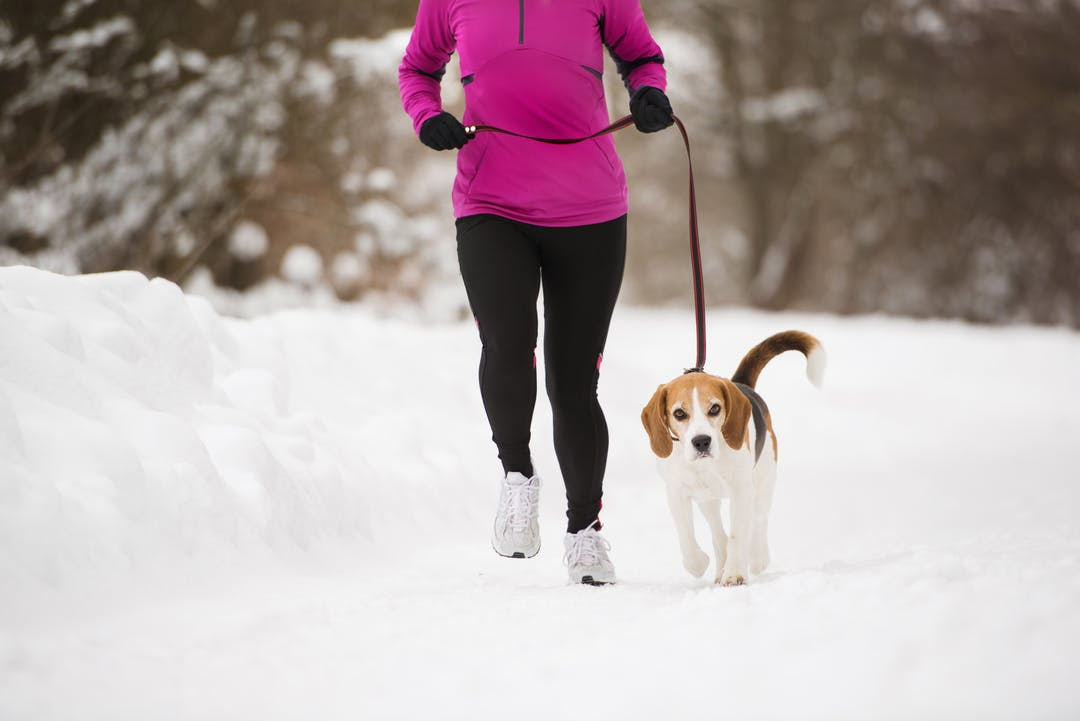 Woman running with her dog in the winter