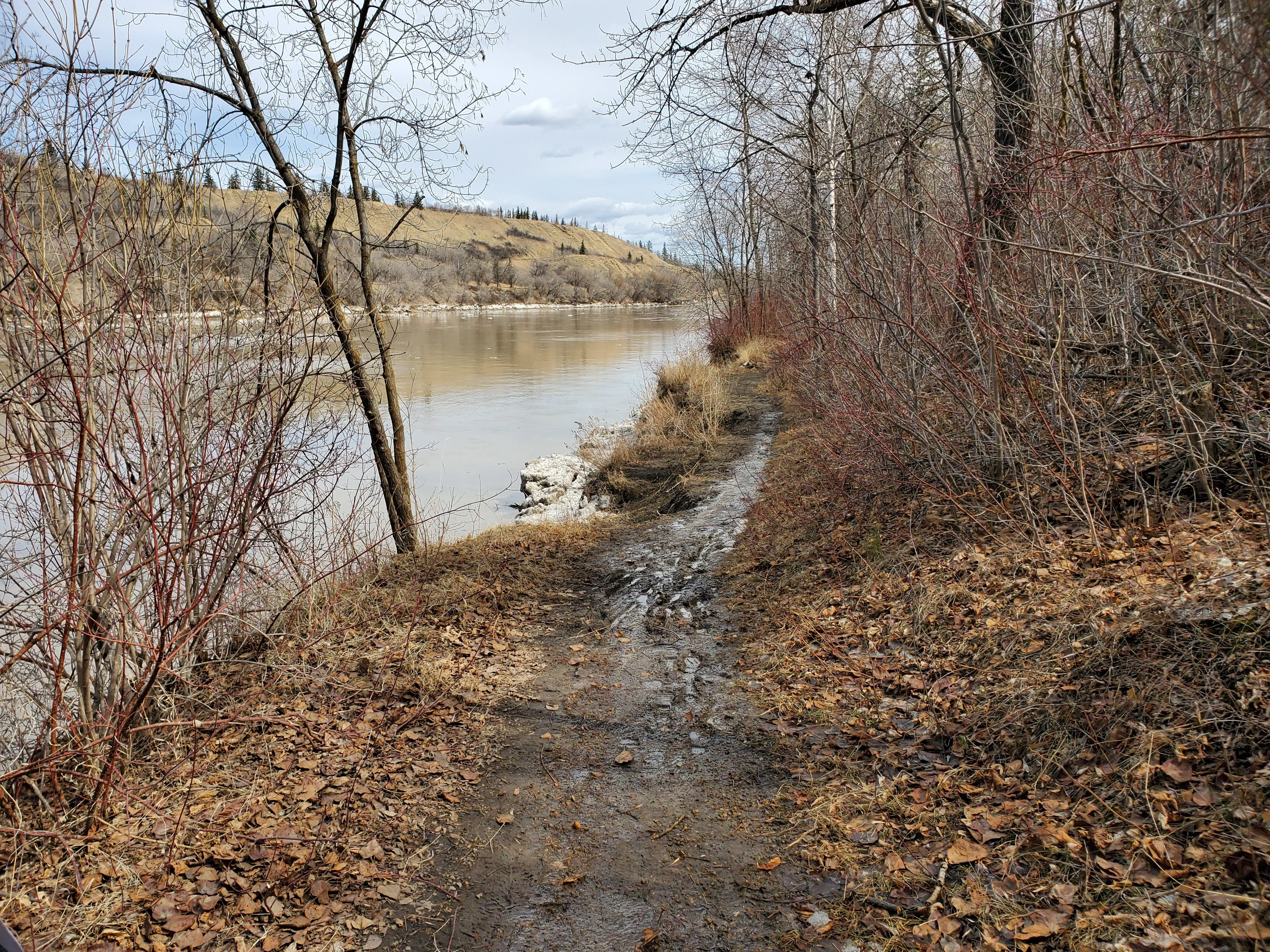 Condition of Existing Trail - 3.jpg