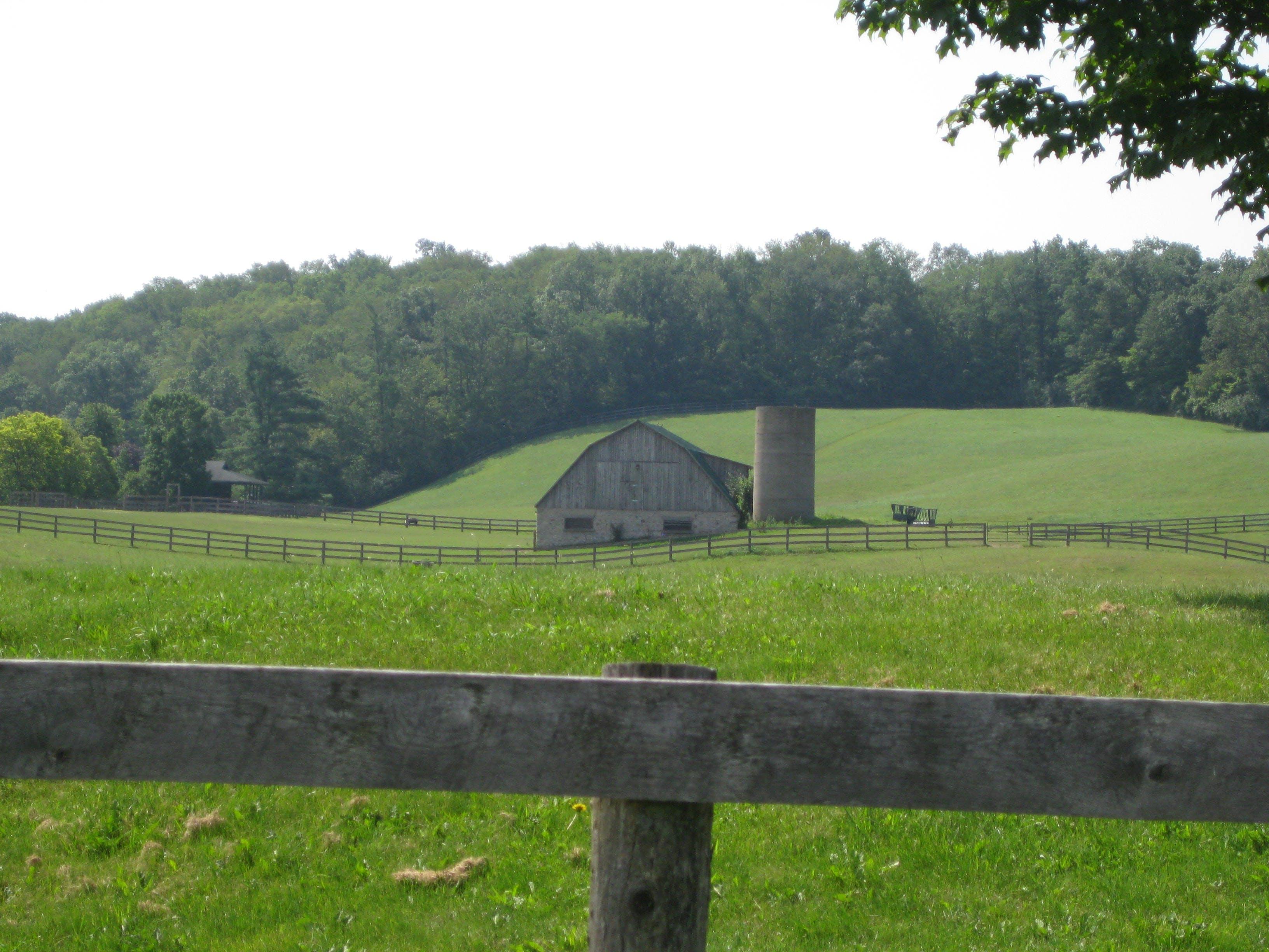 Alps Road farmstead