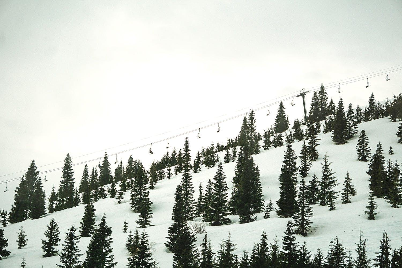 Chair lift at Sasquatch Resort during winter
