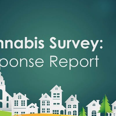 Cannabis Survey Response Report Page 1