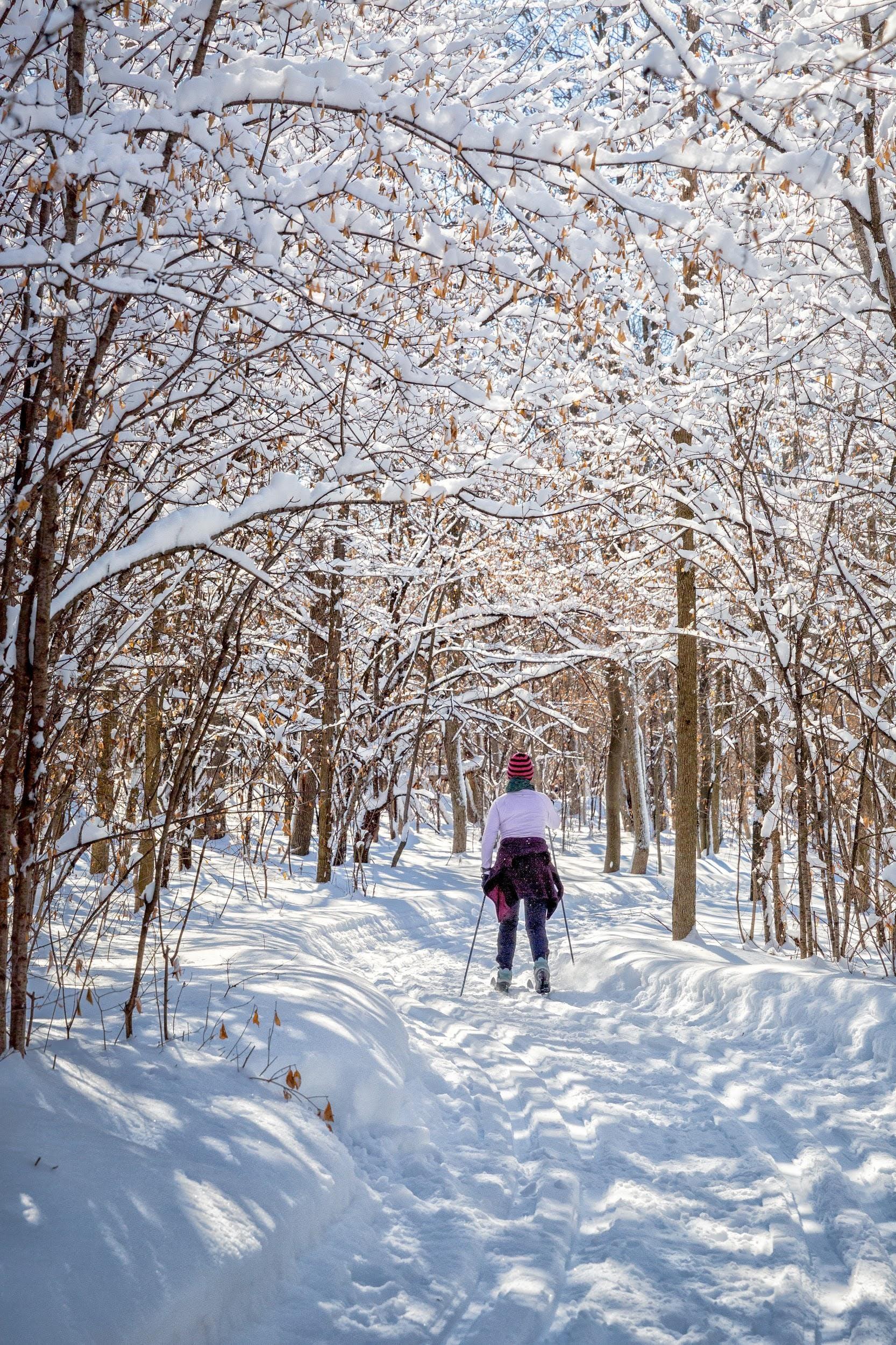Sentiers de ski