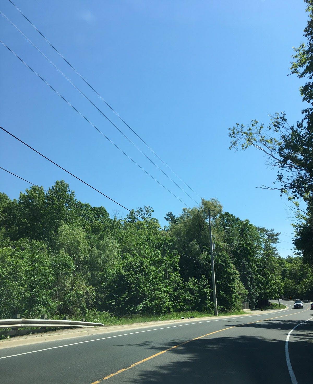 Scenic views along Mississauga Road