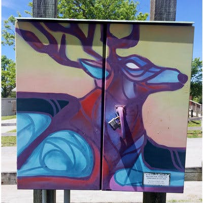 Graffiti Murals on Utility Boxes, Creative Persistence