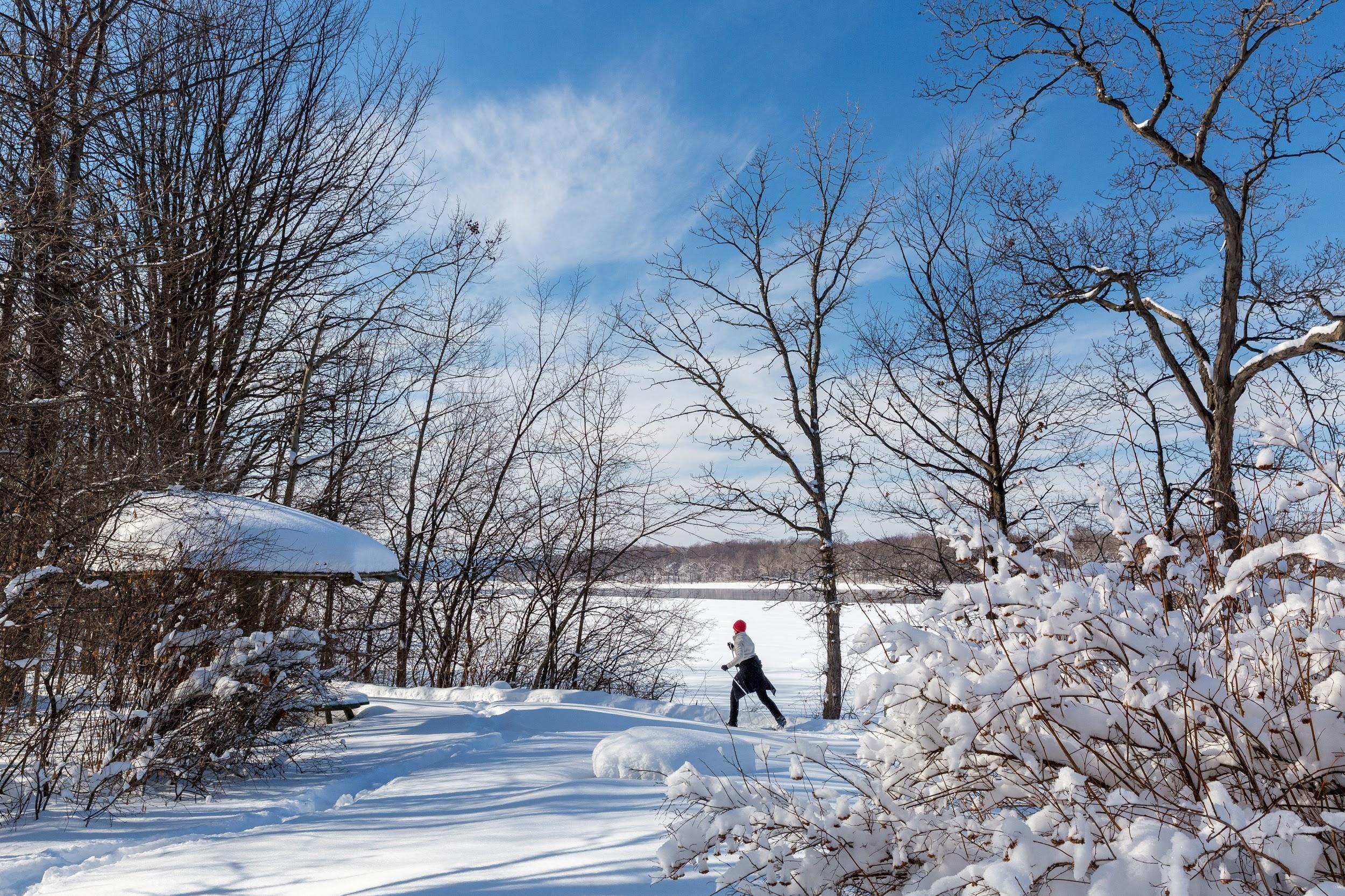 Snow-covered ski trails
