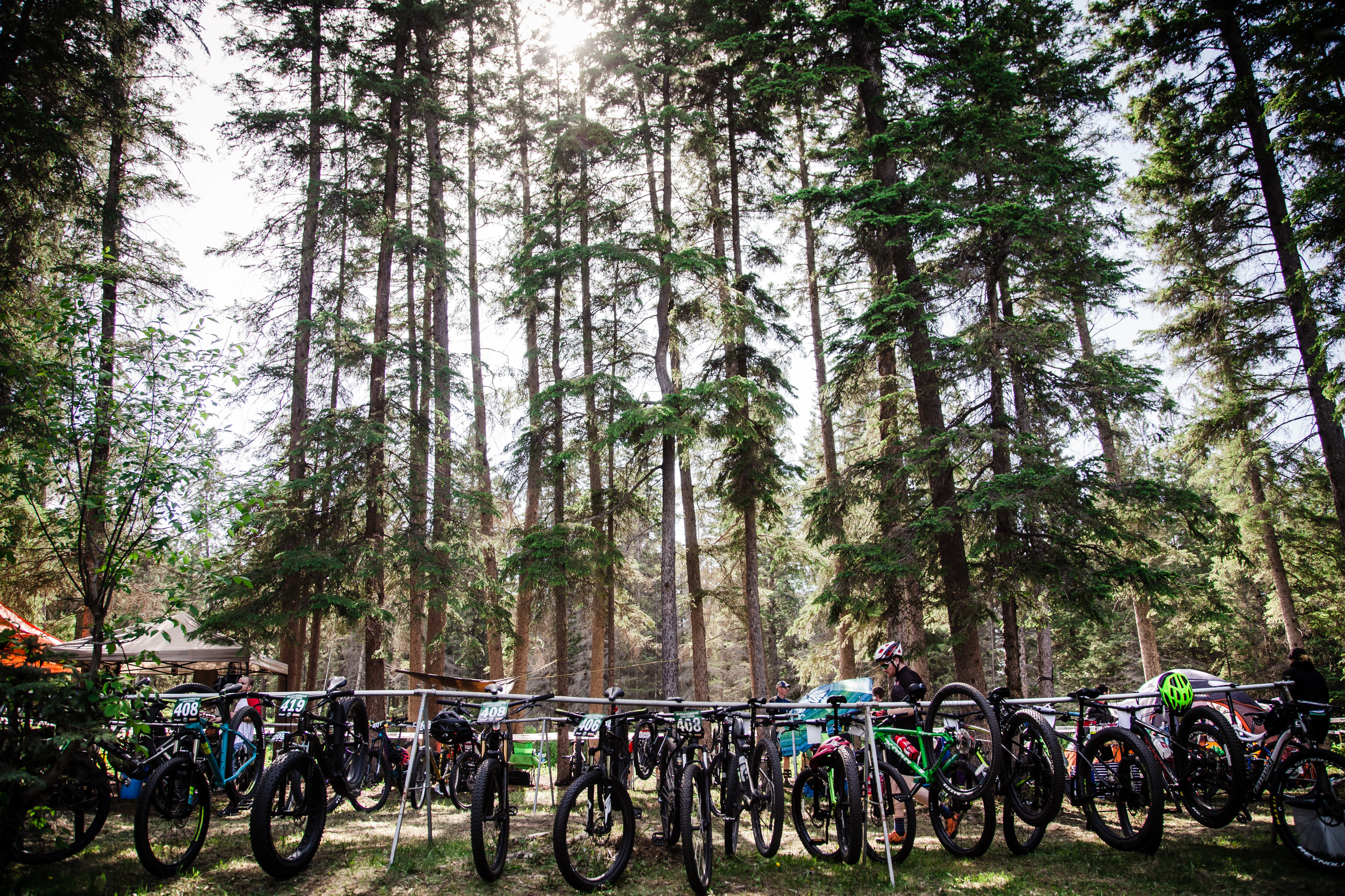 Ready for the 2019 Pine Needle Bike & Music Festival