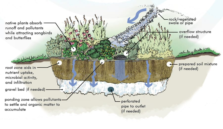 Storm Water Considerations