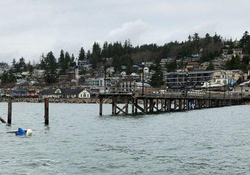 Waterfront Devastation