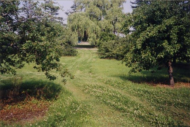 2001 Pinchin Orchard Ml Sk0160