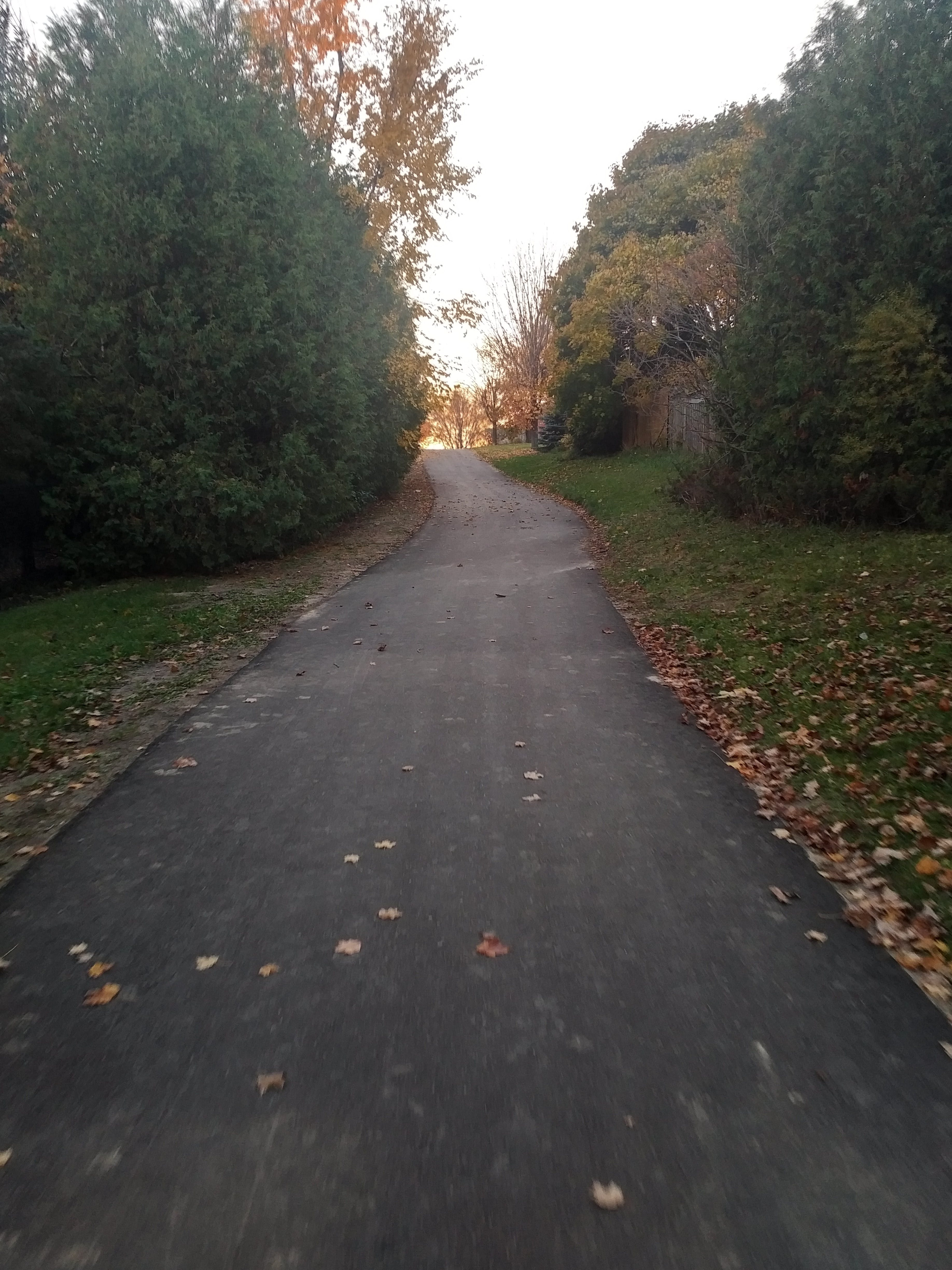 Trail conditions after paving