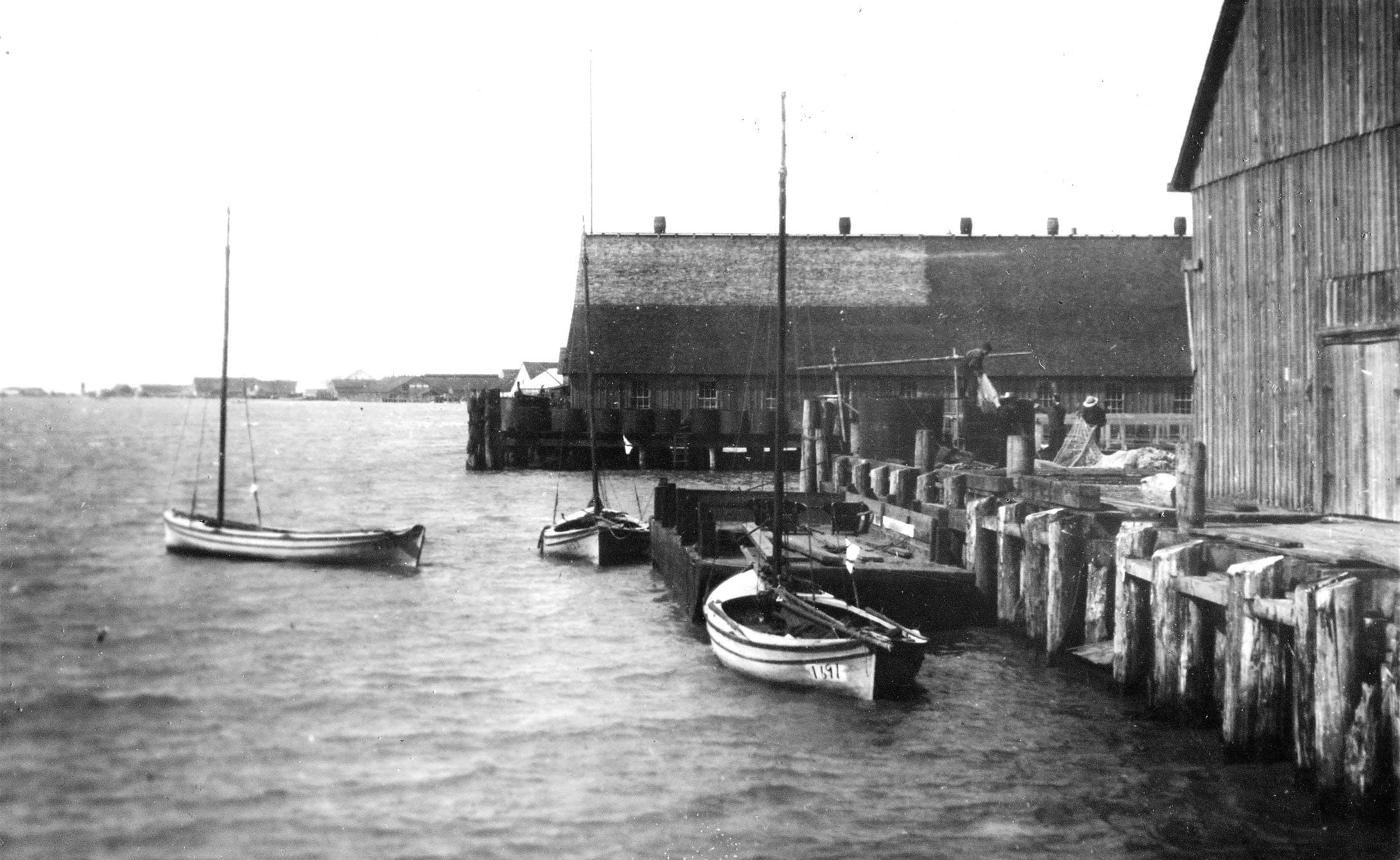 Steveston Canneries, 1908