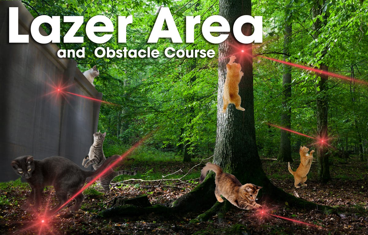 Lazer area and obstacle course