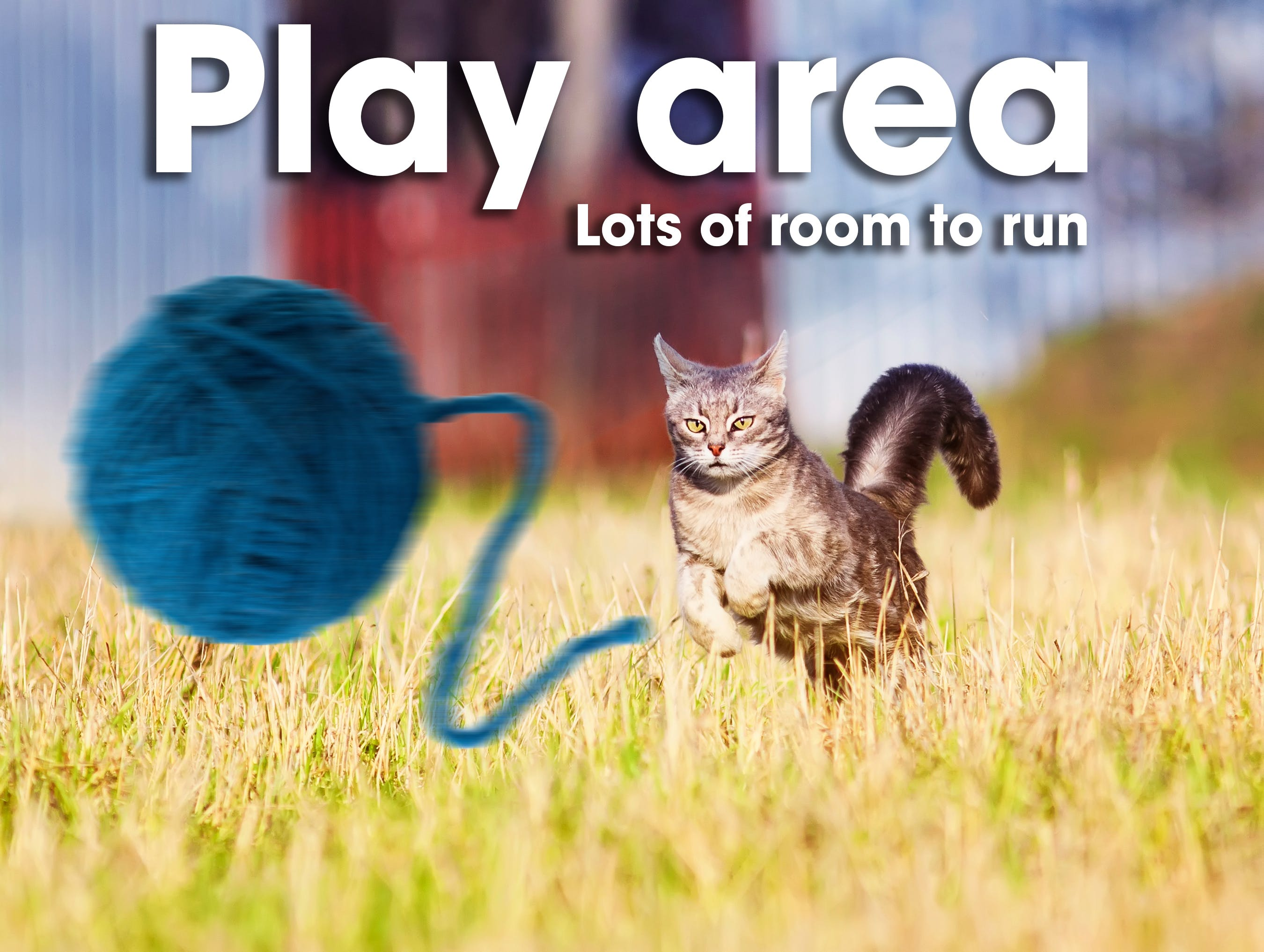 Play area with a lot of room to run