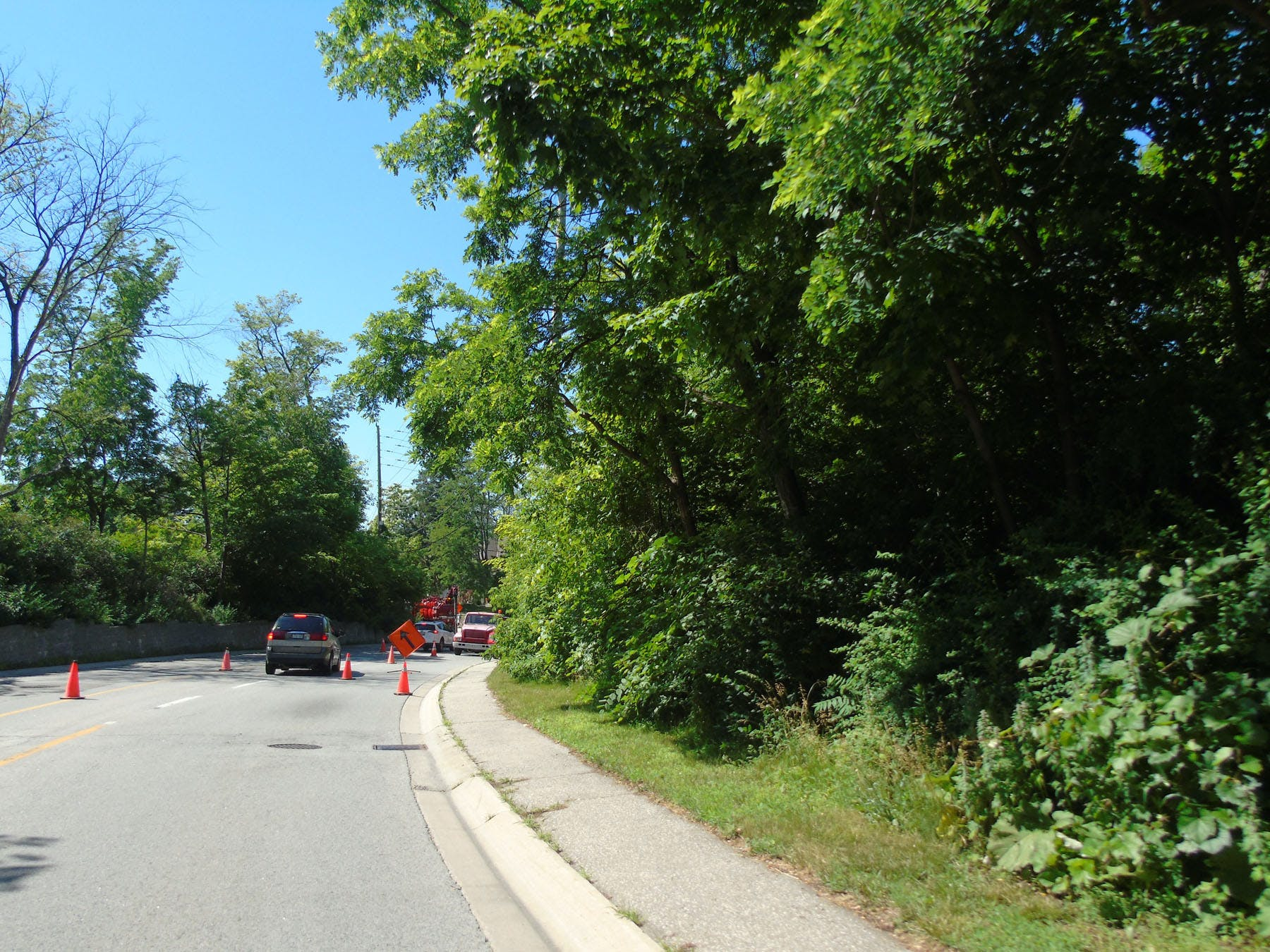 Scenic views and mature street trees along Mississauga Road