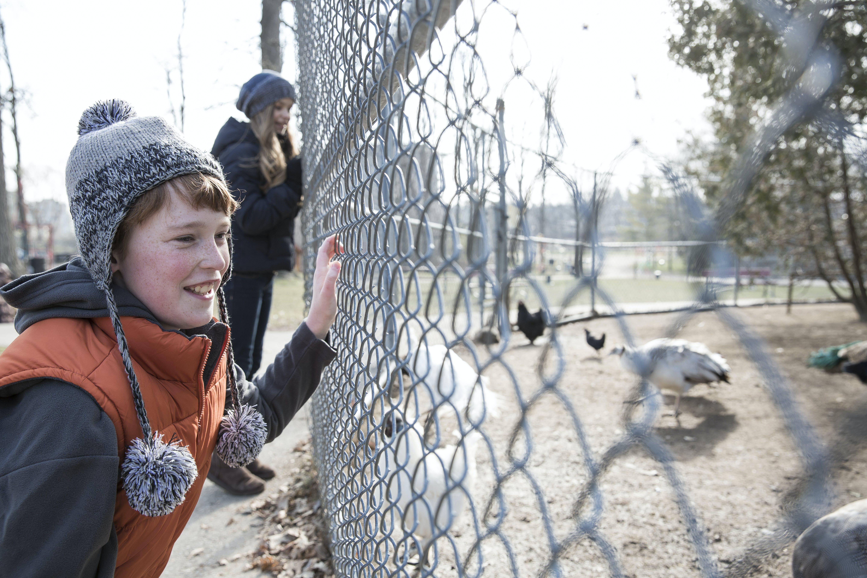 Waterloo Park Animals Winter Hr