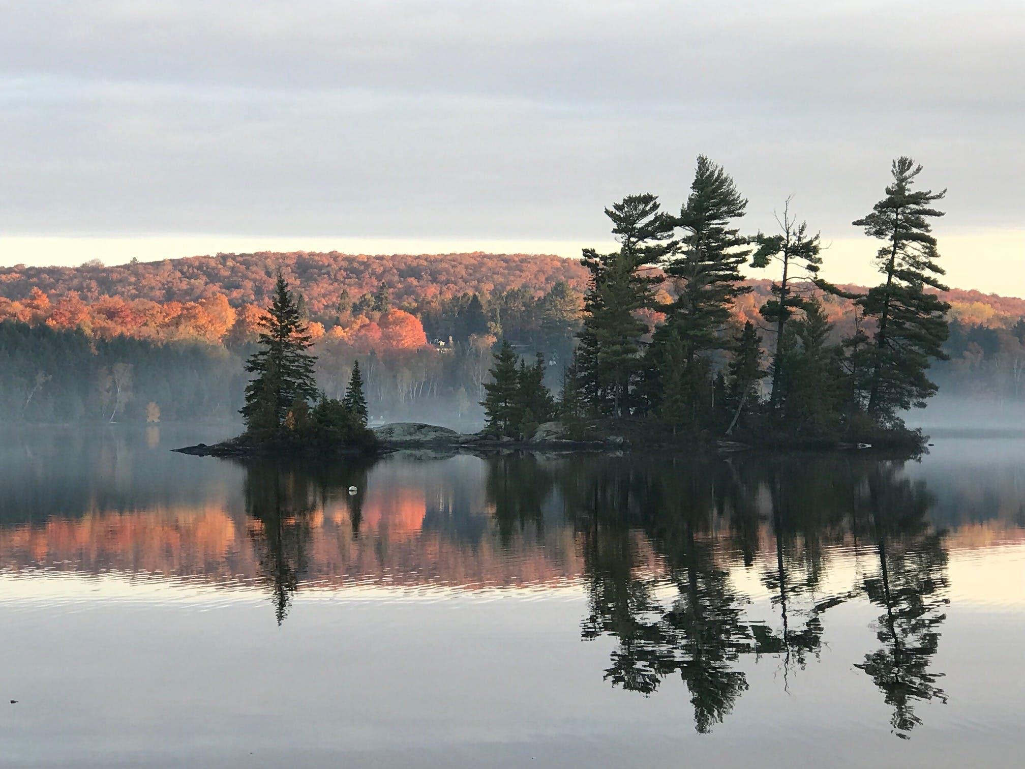 Betty Island at Dawn by Mary Spring