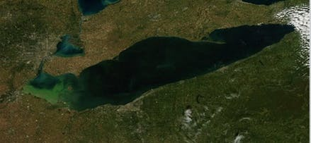 Satellite image of an algal bloom on Lake Erie, taken on September 26, 2013. Credit: NASA image courtesy Jeff Schmaltz, MODIS Rapid Response Team at NASA GSFC.