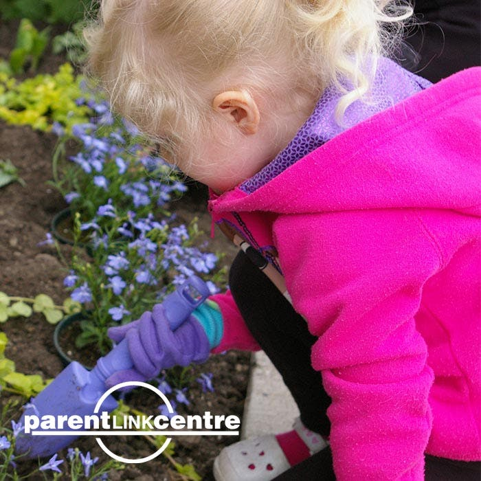 Parent Link Summer Programs in Chestermere, AB