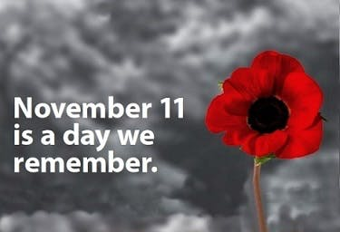 remembrance day services connect grey highlands