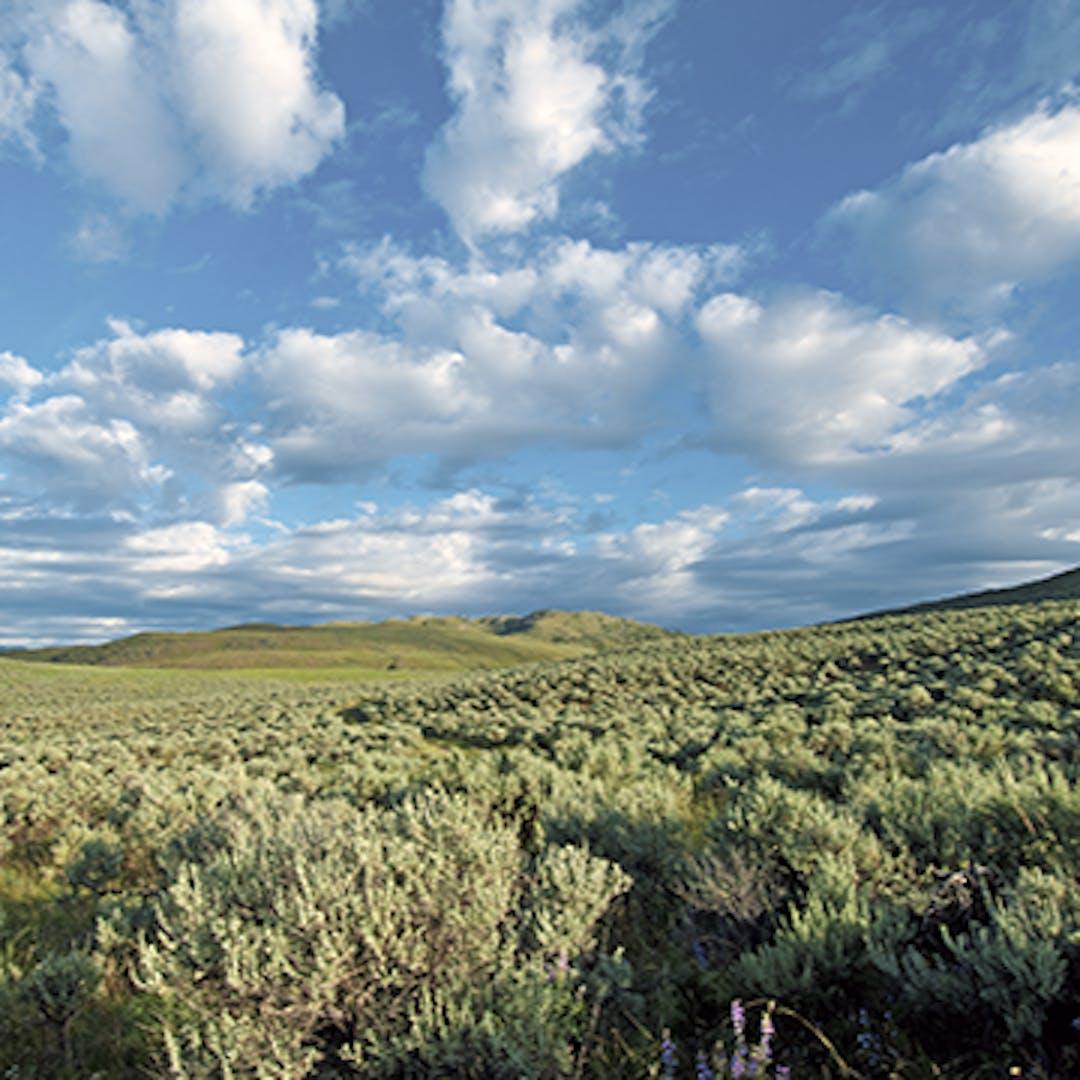 South Okanagan Similkameen Landscape