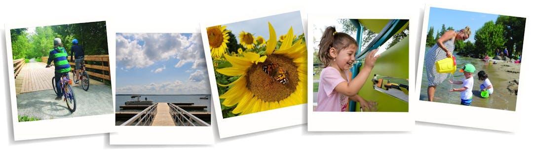 Photo challenge page