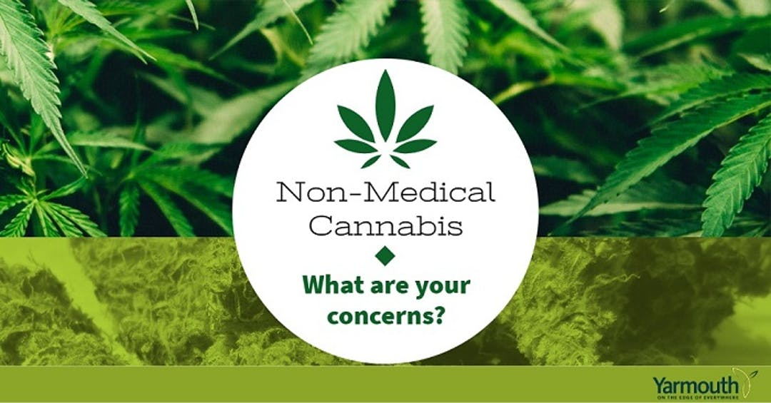 Non-Medical Cannabis Legalization