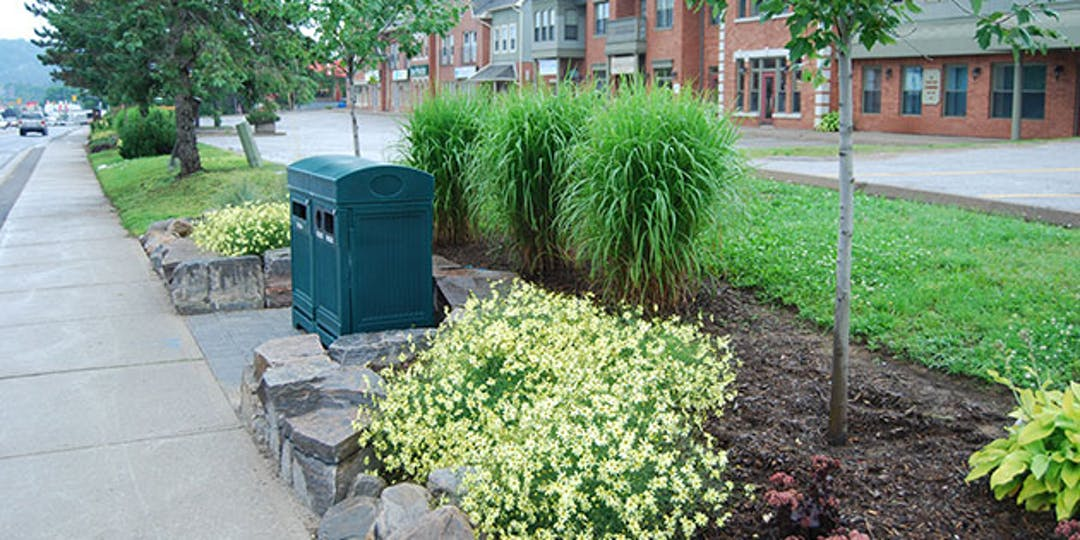 sidewalk view of King William Street with flowers and landscaping around waste receptacles