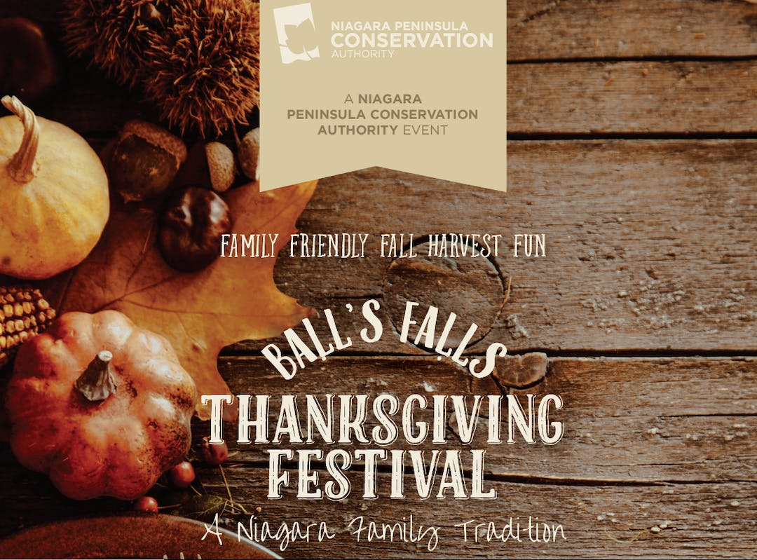 The Ball's Falls Thanksgiving Festival is a Niagara tradition that hosts 30,000 guests over each year.   With more than 170 juried artisans, food vendors, demonstrators, and entertainers participating in this four-day annual tradition, there is always plenty to do, see, and explore.