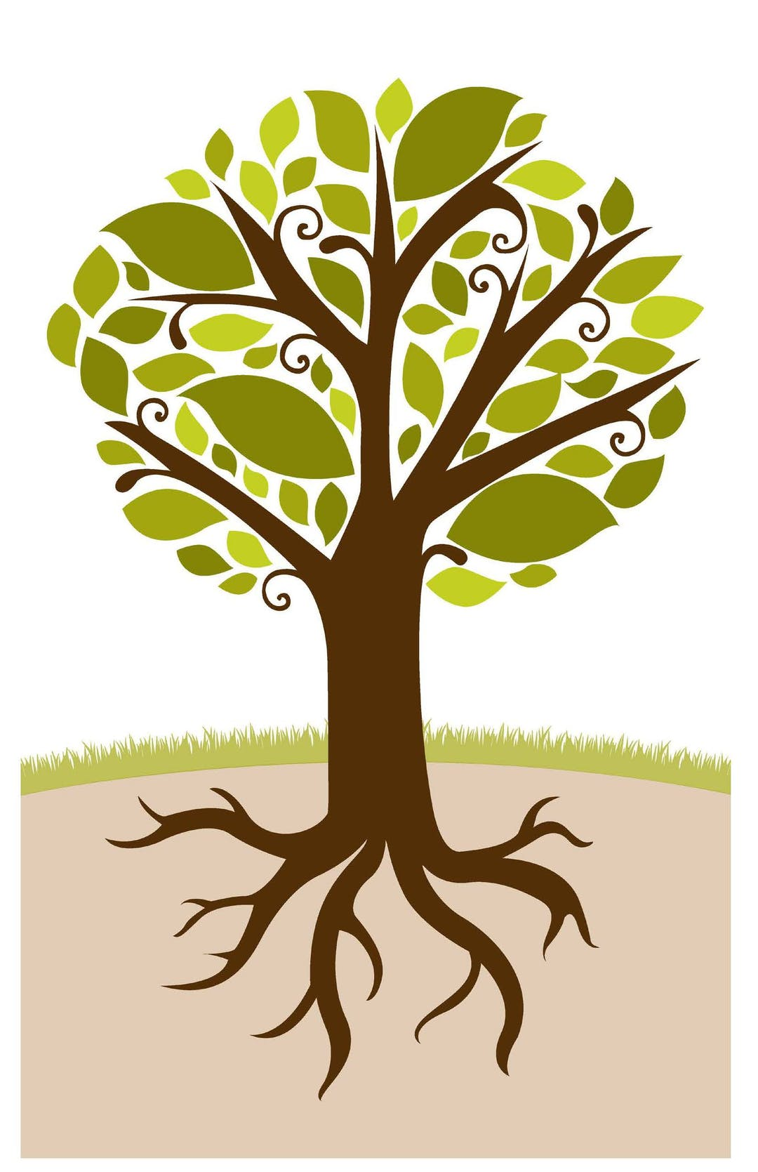 General graphic of a tree